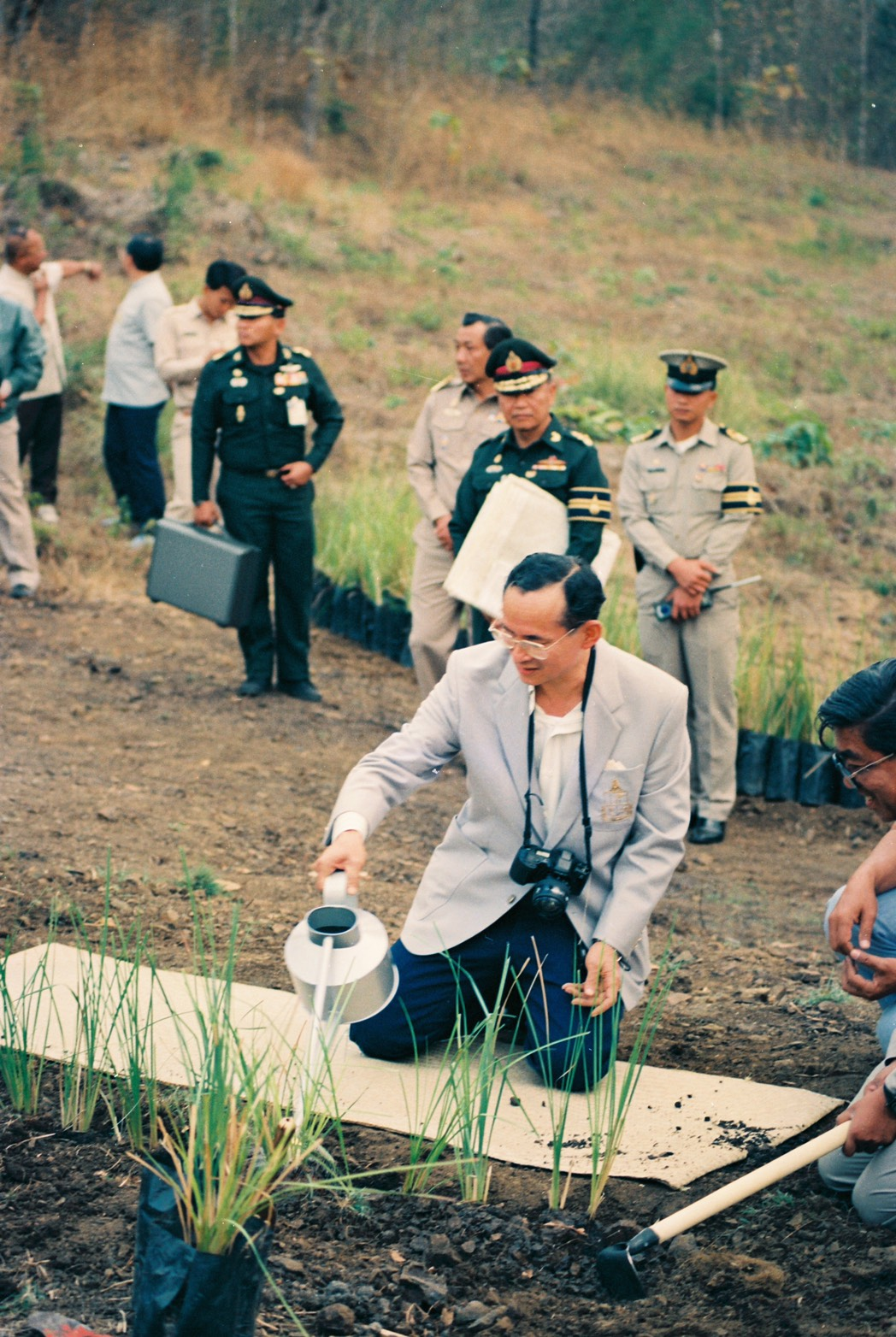 Vetiver for Soil & Water Conservation: 